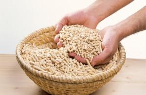 I prezzi pellet crescono in Germania. Il dato fa riferimento al primo trimestre del 2013.