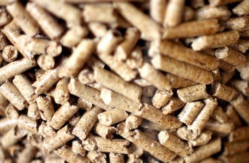 Qualità pellet: come scegliere e trovare il pellet migliore?